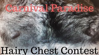 Hairy Chest Contest - Carnival Paradise