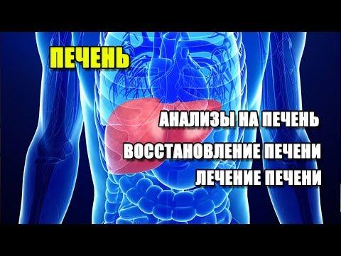 Профилактика вир. гепатитов