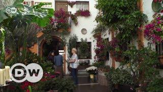 The patios of Córdoba | Euromaxx