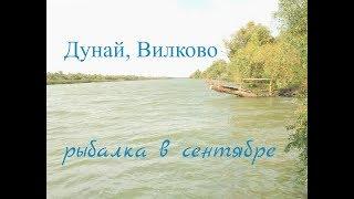 Дунай, Вилково. Рыбалка с комфортом. День первый, начало.