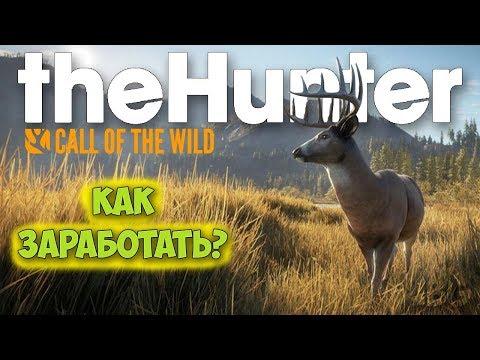 КАК ЗАРАБОТАТЬ БЫСТРО ДЕНЕГ - ОХОТА - The Hunter: Call of the Wild #5