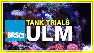 Welcome to BRS Tank Trials! Episode 1 - BRStv Tank Trials