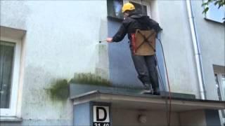 Usuwanie zanieczyszczeń i glonów z elewacji bloku