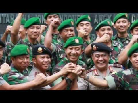 Pengejaran Di Papua Terkini