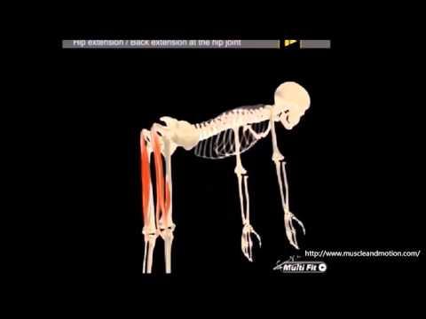 Husten und Halsschmerzen in Osteochondrose