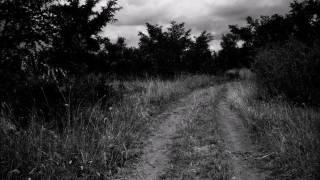 Chimaira - Empty