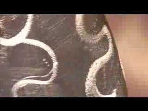【閲覧注意】社民党公認候補 増山麗奈さんの過激ヌード映像 母乳を飛ばすパフォーマンスも - おもしろメディアBOX 動画・画像 ニュースまとめ