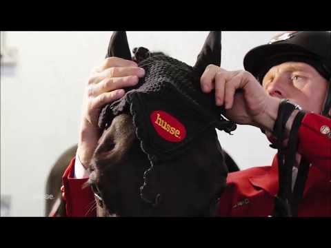 Husse Italia - accessori per cavalli