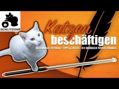 🔥Katze beschäftigen / Katzenangel Tutorial / Katzenspielzeug selber machen / mit Katze spielen