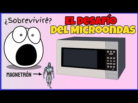 ¿Es dañina la comida calentada en el horno de microondas?   El desafío del microondas