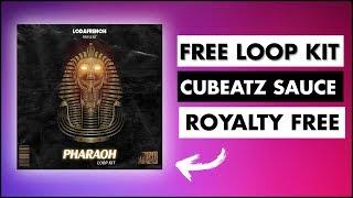 Cubeatz Loop Kit at Next New Now Vblog