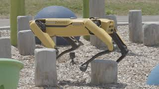 Boston Dynamics, Spot mini, product release 2020