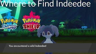 Indeedee  - (Pokémon) - Pokemon Sword and Shield - Where to Find Indeedee