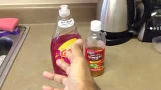 Get rid of FRUIT FLIES and GNATS and all small flying bugs, WATCH NOW.