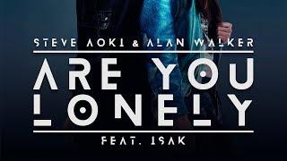 Are You Lonely feat. ISAK (Erick Palacios Festival Mix) - Steve Aoki & Alan Walker