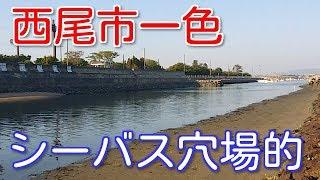 愛知釣り場一色中学裏の釣り場ポイント紹介!シーバス狙い穴場的!