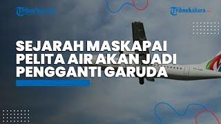Sejarah Maskapai Pelita Air yang Digadang sebagai Pengganti Garuda Indonesia apabila Ditutup