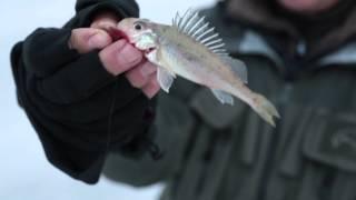 Диалоги о рыбалке. зимняя рыбалка.