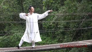 Wudang Dragon walk