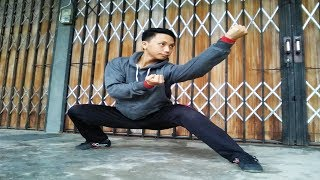 How to Punch Explosively in Wushu Taolu - Wushu Tutorial