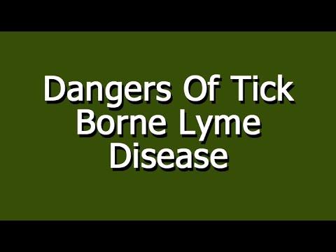 Video Dangers Of Tick Borne Lyme Disease