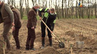 Iohannis: Este extrem de important să combatem deşertificarea şi să extindem suprafaţa de pădure