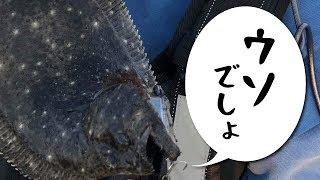 ヒラメのあり得ない釣り方、静岡サーフで起きた奇跡【六畳一間の狼】