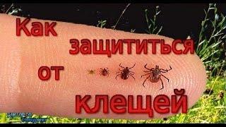 УКУС КЛЕЩА / TICK BITE