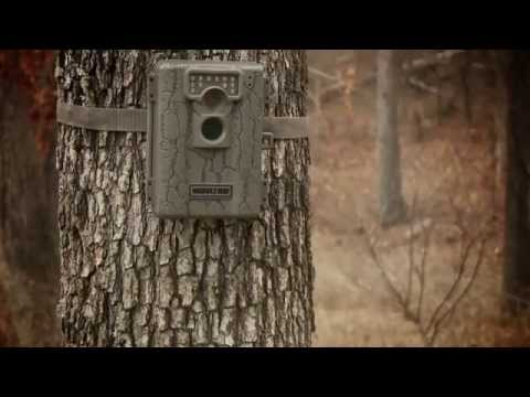 Moultrie A5 Game Spy Low-Glow Infrared Digital Trail Camera (5 MP)