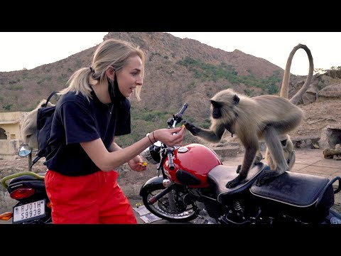 Download I went to India by myself HD Mp4 3GP Video and MP3