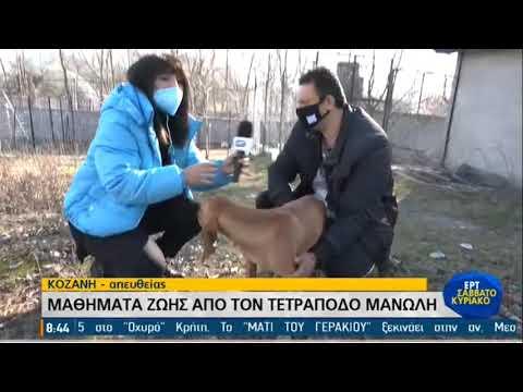 Ο θαρραλέος … Μανώλης της Κοζάνης | 14/03/2021 | ΕΡΤ