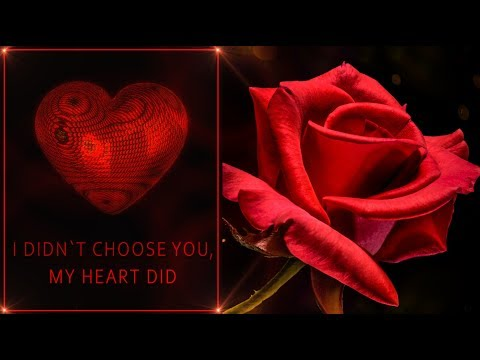 💖 I didn`t choose you, my heart did💖Animation Greeting Cards #4K #WhatsApp