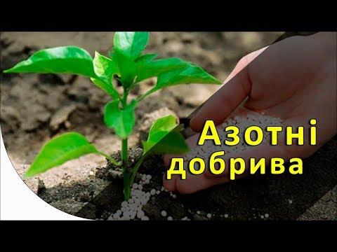 Характеристика основных азотных удобрений