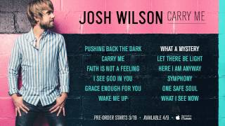 Josh Wilson - Carry Me (New Album Sampler)