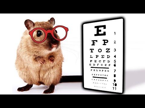 Exerciții de rutină care pot îmbunătăți vederea