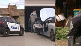 Sting tackles criminal enterprise involving stolen luxury cars, illegal marijuana grows