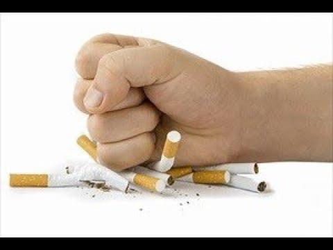 Le targhe da fumare brizantin listruzione il prezzo