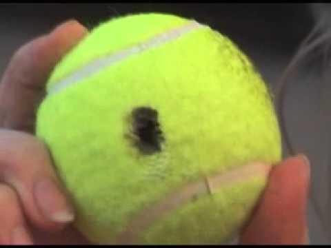 comment ouvrir une twingo avec une balle de tennis
