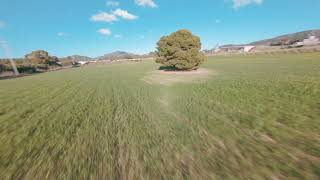 Cinematic Fpv | Cruising the field with the Flywoo Hexplorer LR4 + Gopro 6 Naked