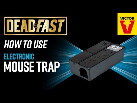 Deadfast Electronic Mouse Trap Video