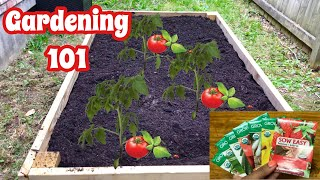 Beginner's Guide To Gardening 101 | Grow Your Own Food