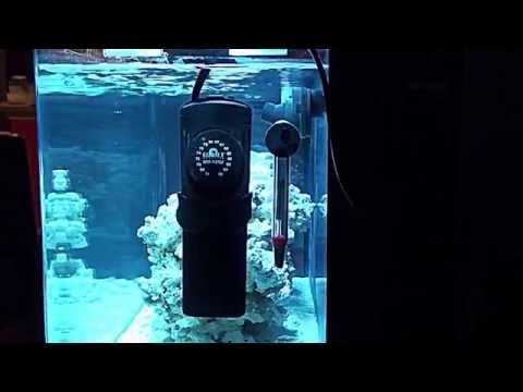 Product Review: Cobalt Neo-Therm Submersible Heater