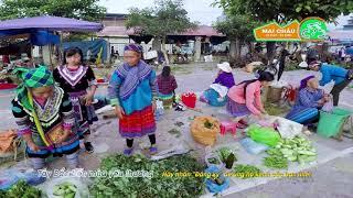 Khám Phá Tây Bắc   Chợ Phiên Bắc Hà Lào Cai