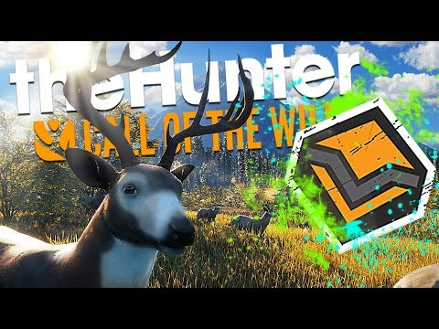 The Hunter Call Of The Wild | HUDDLE WHITETAIL DIAMOND MULTI MOUNT!!