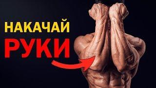 Как накачать руки (бицепс и предплечье)