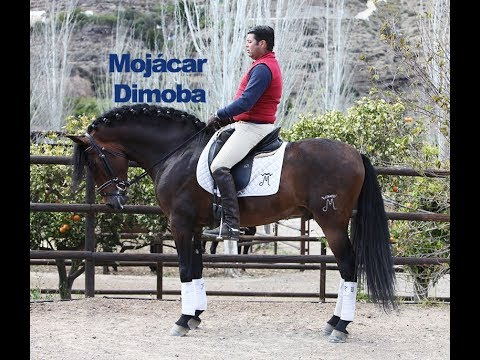 Mojácar Dimoba montado - Abril 2018