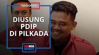 PDIP Resmi Usung Menantu Presiden Jokowi Bobby Nasution dalam Pilwakot Medan