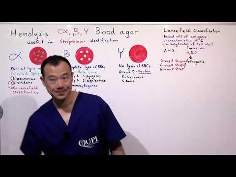 Hogyan lehet gyorsan kezelni a prosztatagyulladást