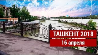 Ташкент 16 апреля 2018 год. Снято на телефон LG X Venture со стабилизатором Smooth Q.