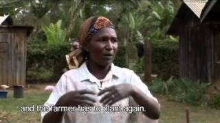 preview picture of video 'Margaret Silas - Ngurumo village, Ntakira - Kenya'
